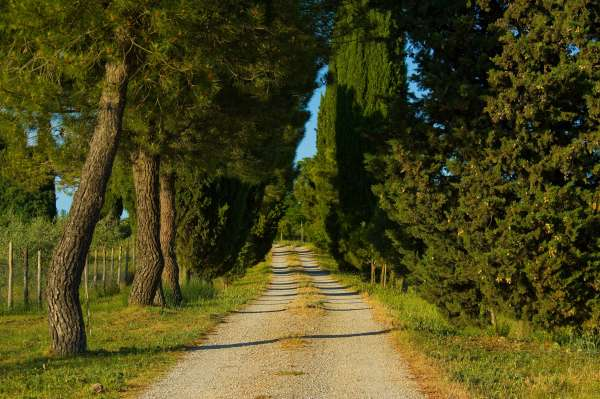 a typical road leading to our stay in Acianno